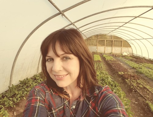 Faces of the Sligo Food Trail: Claire Winters, Good and Green Organics