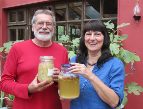 A weekend of fermentation madness in Sligo and Leitrim 17th -19th June 2017