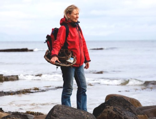 Faces of the Sligo Food Trail: Dr. Prannie Rhatigan, Irish Seaweed Kitchen