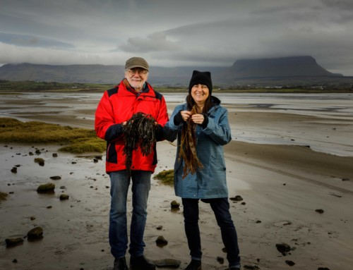 Sligo Food Tours launches this April by Hans & Gaby Wieland